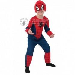 Costum Spiderman Classic Todd